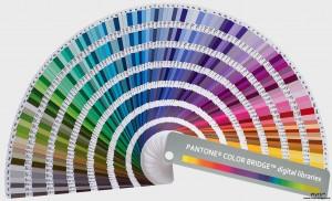 3 palette pantone