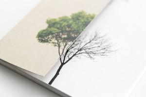 1. brochure