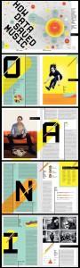 4. riviste