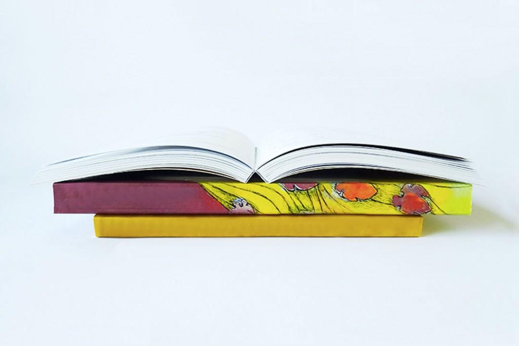 Libri rilegati in brossura filo refe.